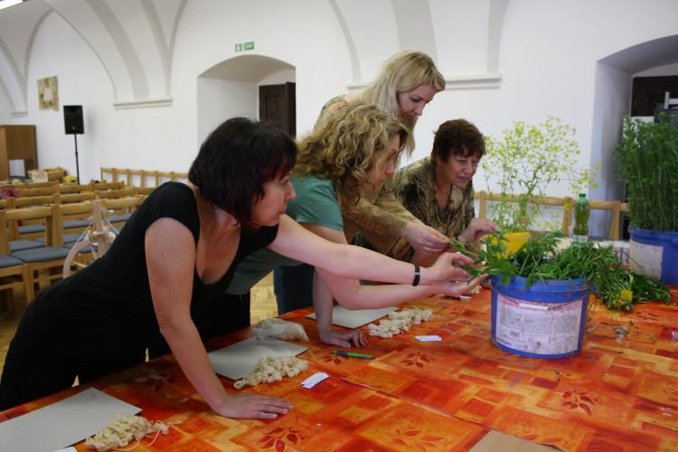 Seznámení s rostlinama