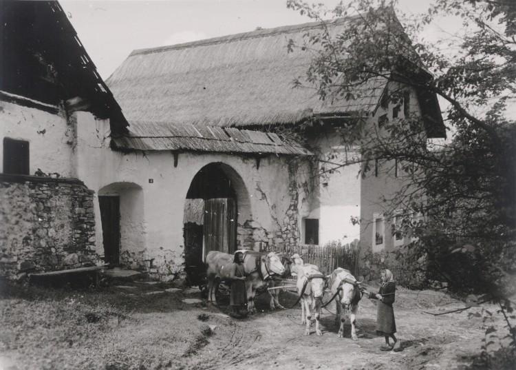 Šumavský statek, počátek 20. století.